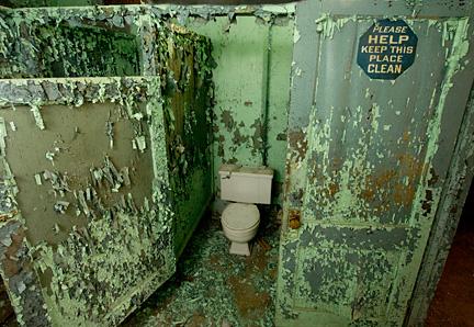 FLUSH Book Cover Toilet